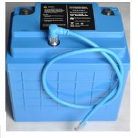 Quality 12V LiFePO4 Battery Pack 12.8V16Ah 208.4Wh Lithium Ion Battery For Golf Trolley for sale