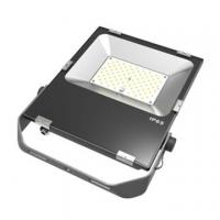 100W LED Flood light for sale