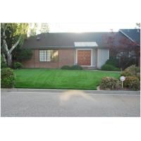 Buy 35mm Pet Artificial Turf 4 Tone Fake Synthetic Grass For Dog / Campgrounds at wholesale prices