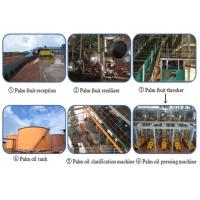 Quality 1-100tpd palm oil processing plant for sale