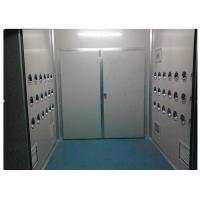 Quality Anti-Static Class 10000 Cargo Air Shower Tunnel For Cosmetic Workshop , Sandwich Panel for sale