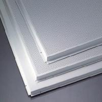 Quality Metal Ceiling Board (TLD-214) for sale