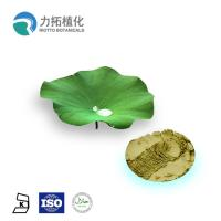 Antifungal Plant Extracts /  Lotus Leaf Extract HPLC UV For Losing weight