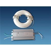 China Electrodeless Induction Lamp on sale