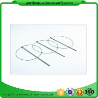 Quality 3 Rings Green Garden Plant Supports , Circular Plant Supports Plastic Coated for sale