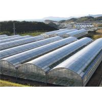 Quality Poly Plastic Greenhouse Film Moisture Proof , Blow Molding Processing Type for sale