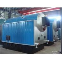 Quality Biomass and coal Gasification Oil Fired Steam Boiler  Horizontal industrial Steam Boiler for sale