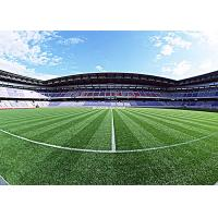 Buy PE Monofilament Football Artificial Grass High Density Artificial Grass For Soccer at wholesale prices