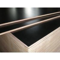Quality Film faced plywood for sale