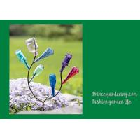 Quality Decorative Garden Plant Accessories , Mini Steel Garden Bottle Tree for sale
