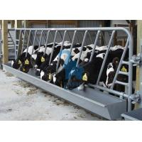 Quality Horizontal Locking Feed Barriers Cattle Feeding Gates Anti Corrosion for sale