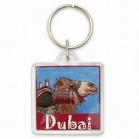 Quality 40mm Square Plastic Keychain with Changeable Photo Inside and Printed Design Insert for sale