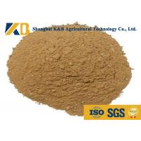 Buy High Fresh Steam Dried Fish Meal Powder For Poultry Disease - Resistant at wholesale prices