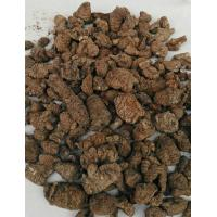Chinese name:Ribenchuanxiong  Cnidium Officinale Makino for sale