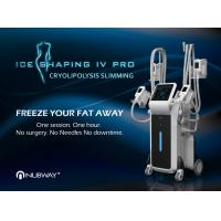China Cryolipolysis Fat Freeze Slimming For Fat Reduce For Beauty Spa & Center on sale