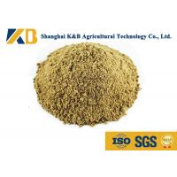 Buy Full Fat Organic Fish Meal Fertilizer / Food Grade Fish Meal Enhance Poultry at wholesale prices