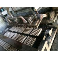Quality Easy To Operate Paper Pulp Molding Machine , Apple Tray Making Machine  for sale