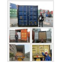 Buy China inspection Third party inspection company Production supervising loading/Container Loading at wholesale prices