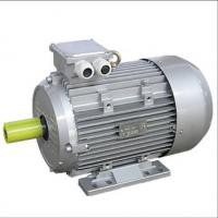 Quality Electric Hoist Motor for sale