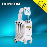 Quality Professional Cryolipolysis Slimming Machine Vertical For Fat Removal for sale
