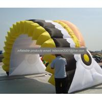 China chief Inflatable Sport Tunnel / Inflatable Tunnel Rental / Football Helmet on sale