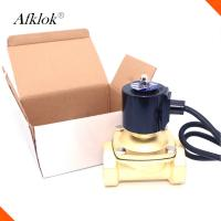 "Quality 1Mpa 2A Series Underwater Solenoid Valve 24VAC 24VDC 110VAC IP68 2"" Low Pressure for sale"