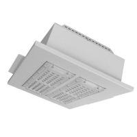 Quality 150W 200W LED Canopy Light Fixtures For Petrol Station for sale