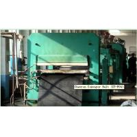 China Chevron Conveyor Belt (XT-F04) on sale