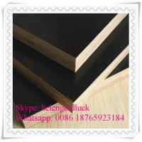 Quality 18mm Film Faced Marine Plywood for Construction for sale
