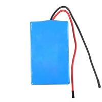 Quality 2.9Ah 24V Lithium Ion Battery Pack For Robot Sweeper for sale
