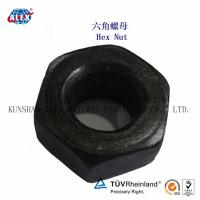 Quality Railway Big Lock Nut Made in China for sale