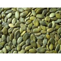 Quality pumpkin kernels for sale