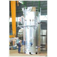 Quality Vertical Industrial Gas Steam Boiler High Efficiency Environmentally Friendly for sale