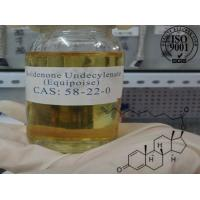 Buy cheap Yellow Liquid EQ Boldenone Undecylenate Muscle Growth Steroids Equipoise from wholesalers