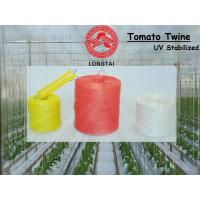 Quality 1mm 1.5mm Colorful Polypropylene Twine For Tomato Tying / Poly Twine Rope for sale