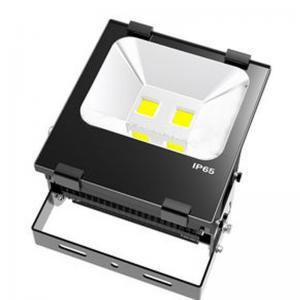 Quality External CRI 75 High Lumen 100W SMD LED Lighting Fixtures Nomo driver for sale