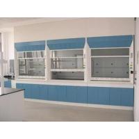 China chemistry lab fume cupboard ,chemistry lab fume cupboards,chemistry lab fume cupboard MFG on sale