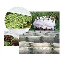 Quality Breathable PP Non Woven Fabric , Garden Weed Control Fabric For Agriculture for sale