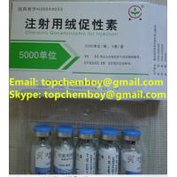 Quality 99% purity HCG 5000iu/vail bodybuilding fat-burning fat-cut fat lose CAS NO.9002-61-3 for sale