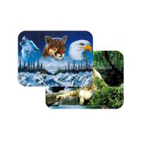 Quality Waterproof Plastice 3D Lenticular Placemats Directly Printing PET for sale