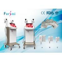 Quality portable cryotherapy machine, lipo laser slimming machine with factory price for sale