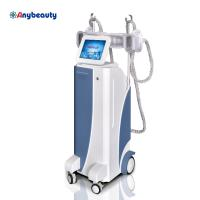 Quality Body Shaper Cryolipolysis Slimming Machine Weight Loss With Membranes for sale