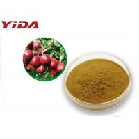 Quality 535 83 1 Hawthorn Extract Powder C6H13NO3 Medicine Grade Prevent Atherosclerosis for sale