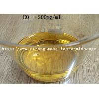 Quality CAS 13103-34-9 Yellow Liquid Injectable Anabolic Steroids Boldenone Undecylenate Equipoise 200mg/ml for sale