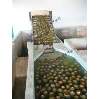 Buy cheap Mango And Pineapple processing line from wholesalers