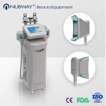 cryolipolysis rf beauty machine,cryolipolysis vacuum slimming equipment for sale