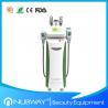 Multifunction cryolipolysis slimming fat freezing cryolipolysis slimming machine with CE for sale