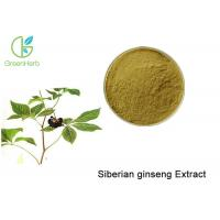 Brown Powder Natural Plant Extracts / Siberian Ginseng Root Extract Anti - Fatigue
