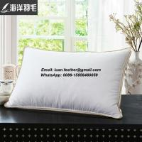 China Wholesale White 80% Duck Feather and 20% Duck Down Decorative Throw Pillow Feather Cushion Insert on sale