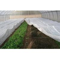 Quality PP Coreless Spunbond Agriculture Non Woven Fabric Water Resistant Lightweight for sale